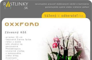 Newsletter 1, rastlinky.sk